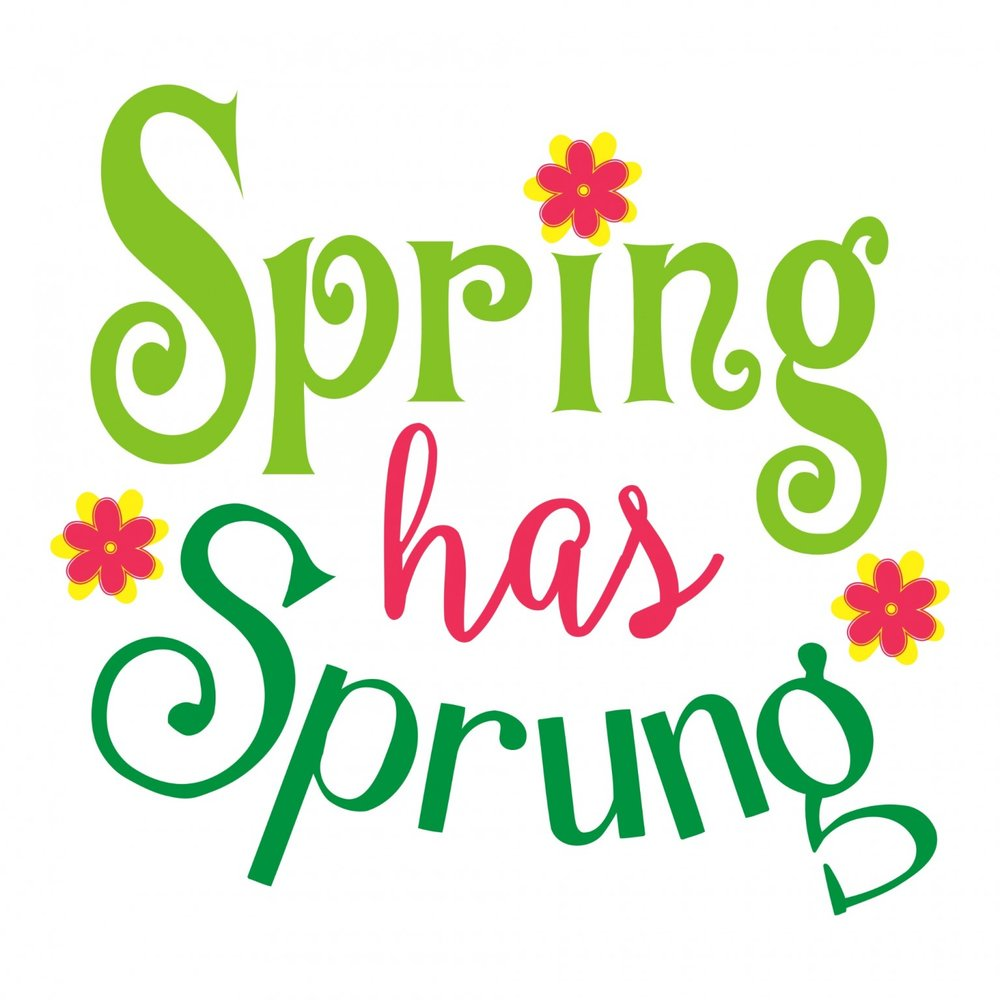 spring has sprung.jpg