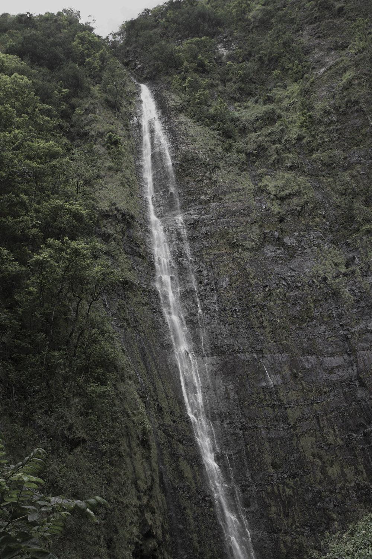 GREETINGS_HAWAII_014.jpg
