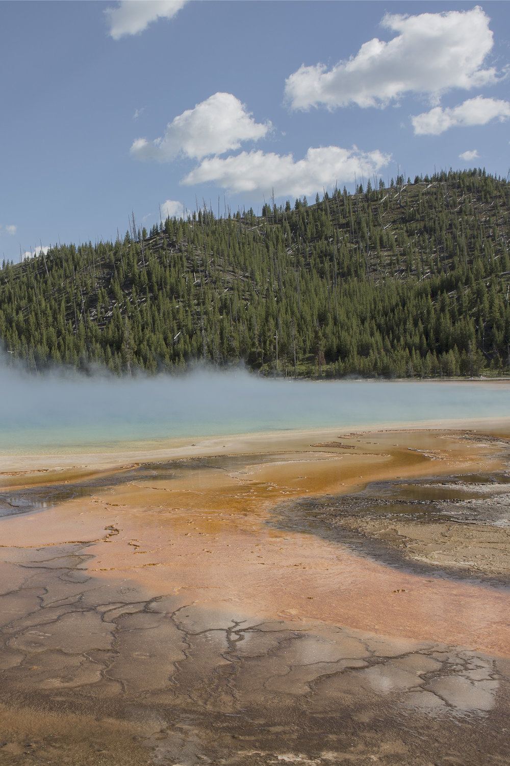 GREETINGS_YELLOWSTONE_012.jpg