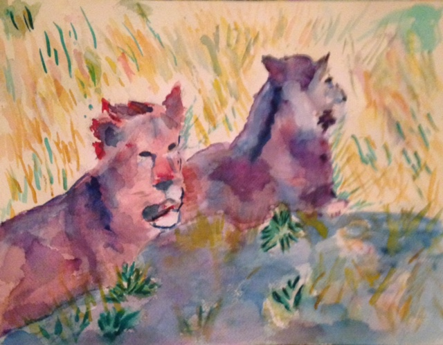 Lions   Daniel Kabakoff