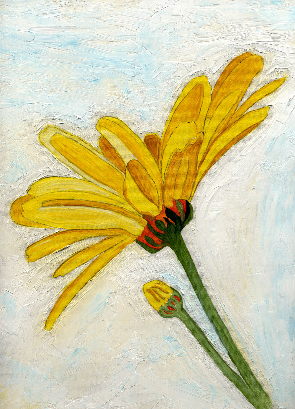 Daisies from the Past   Anne Gitto
