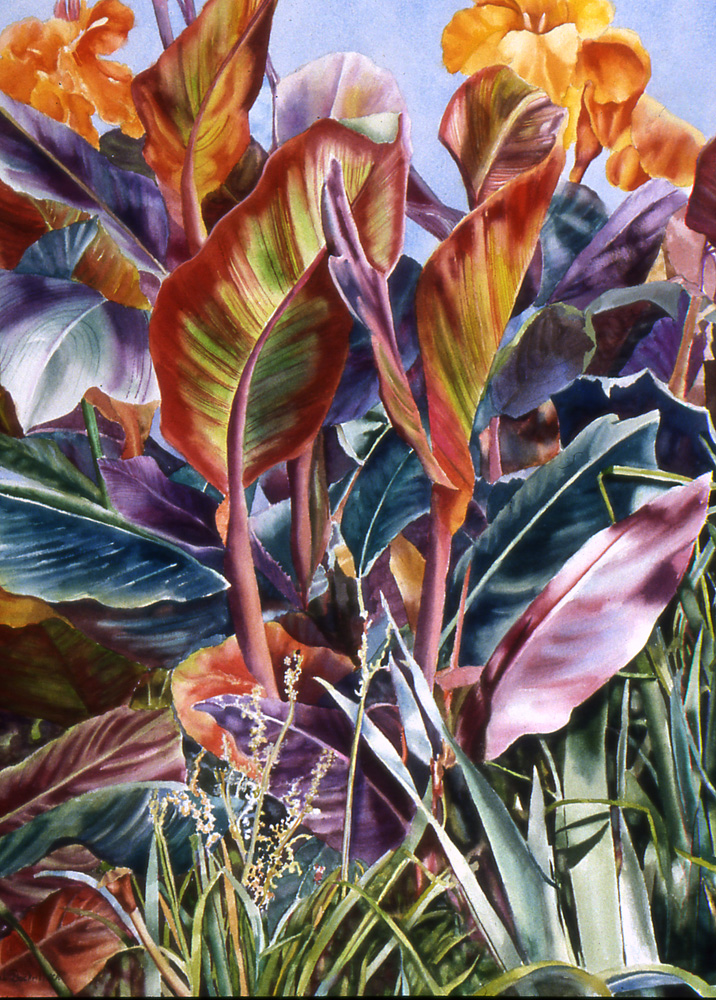 Canna In The Weeds - Watercolor30 x 22