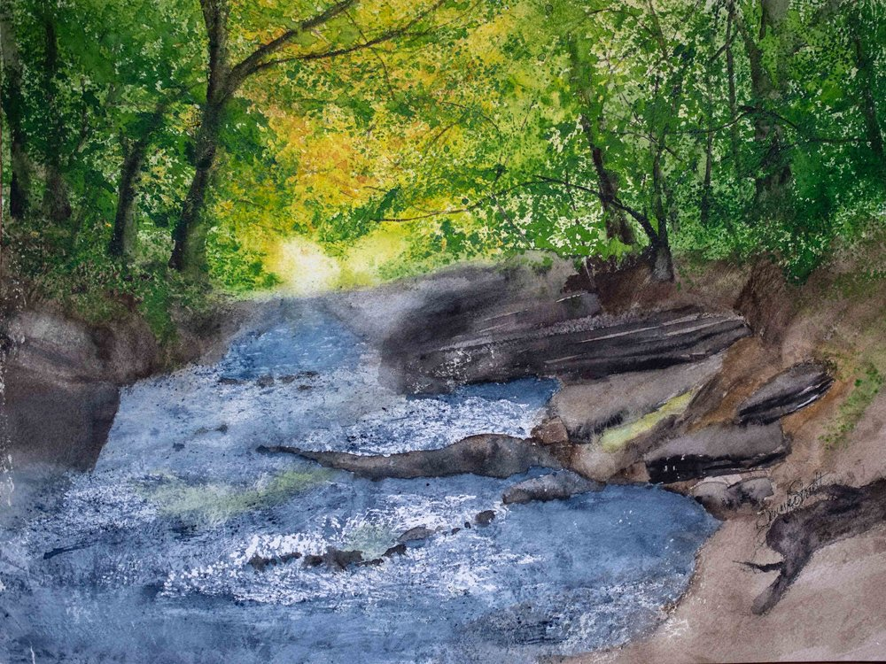 Jennifer Trivett - Honorable MentionI am mostly self-trained as a watercolor artist, having taken just one class. Hailing from the beautiful state of Virginia, many of my paintings have been inspired by my love for the rolling fields and forests of my home state. I am retired and devote most of my time to exploring the lands where I live.Follow Jennifer on Instagram.
