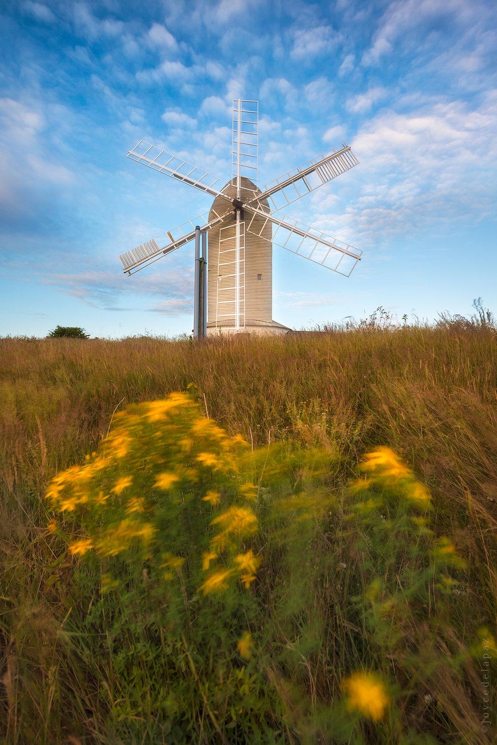 ashcombe mill