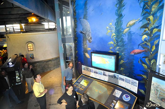 ColleenGnos.Aquarium.Mural.Unveiling.jpg