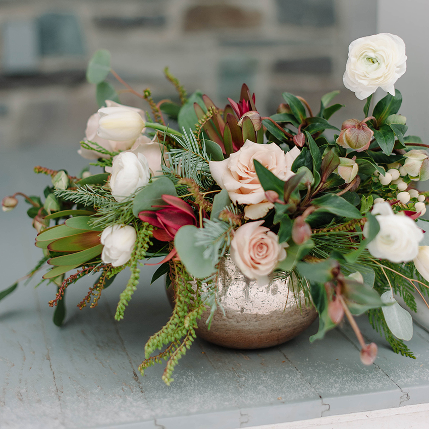 winterrose.jpg