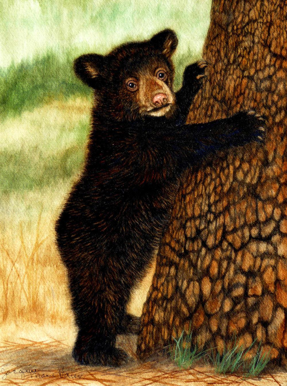 BearCub-Tree-1500-500-Cm.jpg