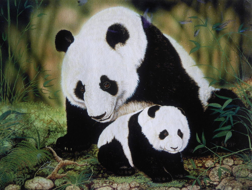 Panda Family-Cm.jpg