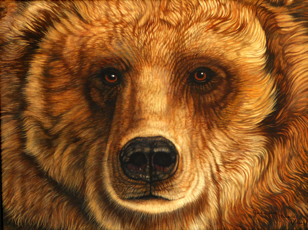 Eyes-Bear-Cm.jpg