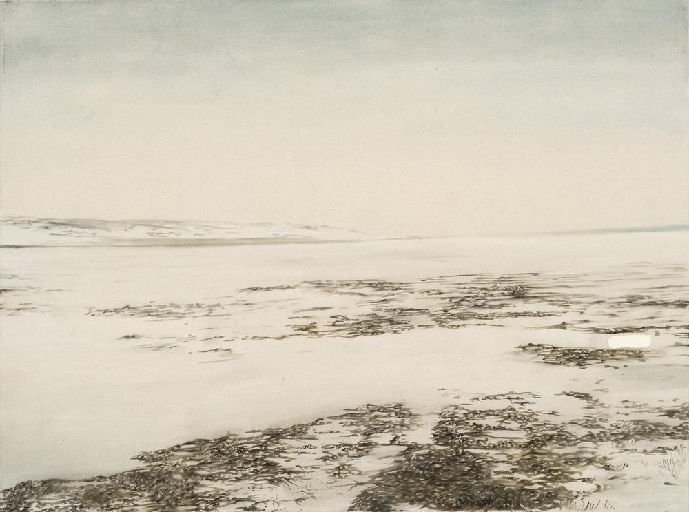 Paysage nordique 9 , 2016. Huile et fusain sur toile, 36 x 48 pouces