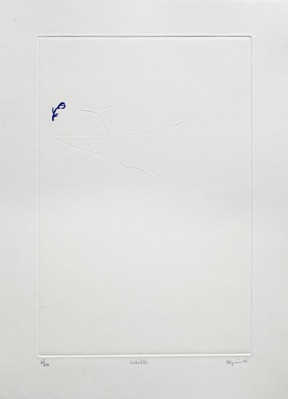 Colibri , 2001.