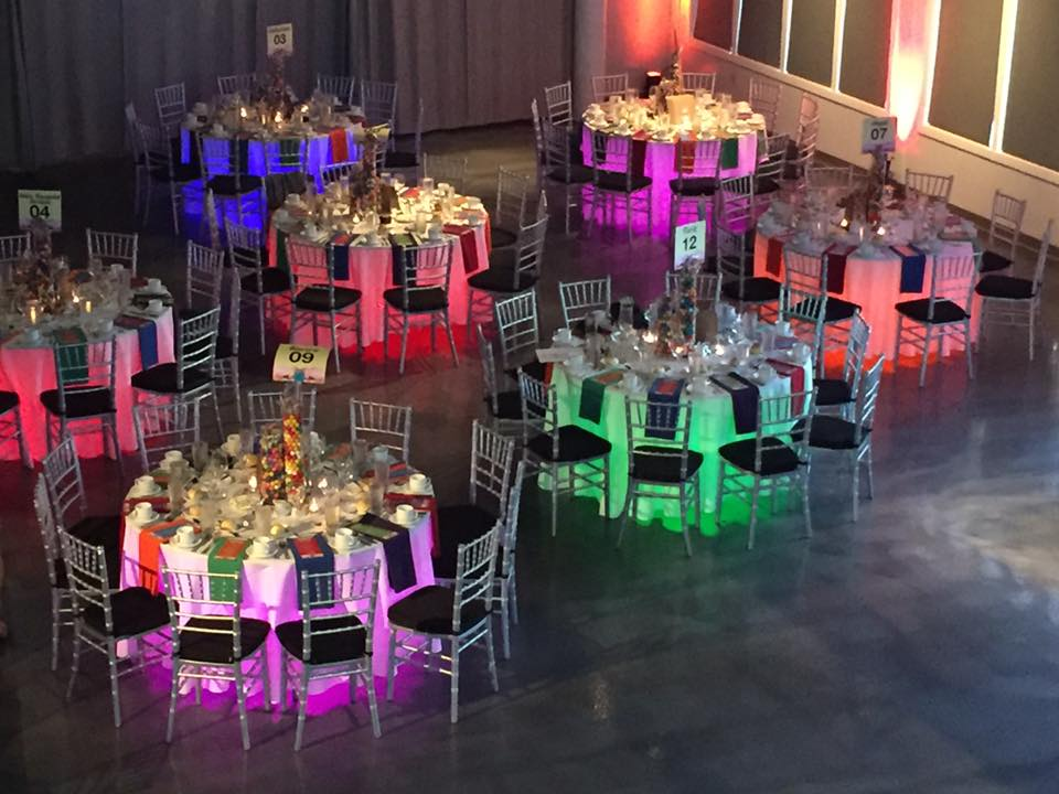 Picture of AV for You Lighting and Video rental for the Minnesota Spay Neuter Assistance Program's Furry Tail Ball at the Minneapolis Marriot City Center