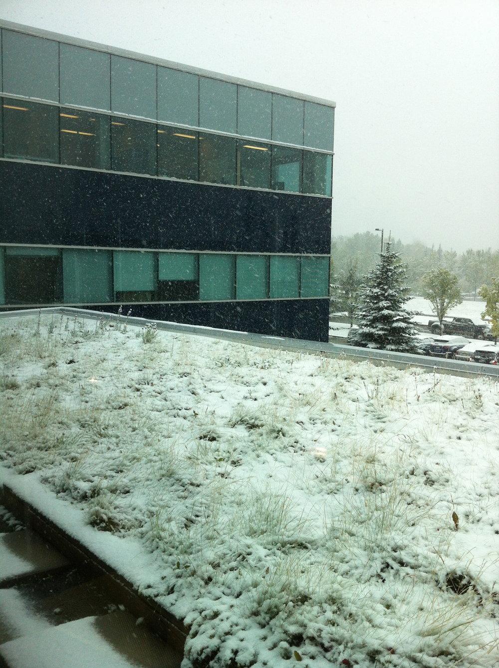 1-AEI8-winter2.jpg