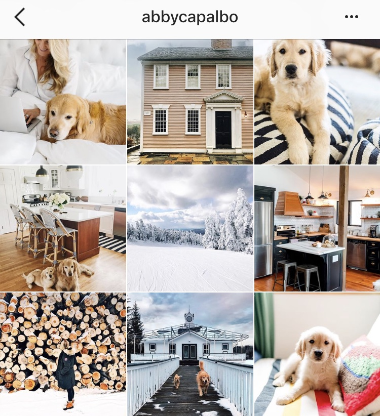 My Favorite Instagram Accounts to Follow - MauraKeeley.com