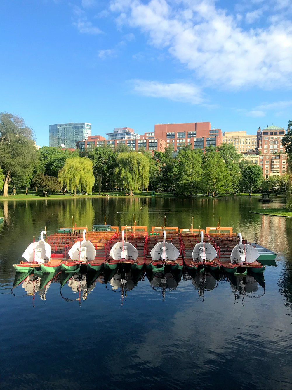 MauraKeeley.com Boston Public Garden Swan Boats
