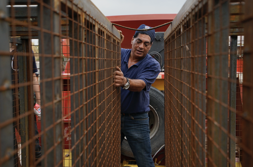 Dr Amir Khalil transporting the animals from Iraq. Photo Four Paws.