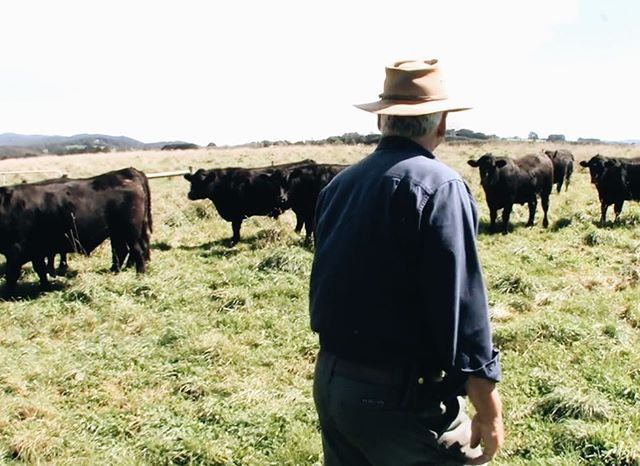 We work with local producers who provide us with bones from grass-fed cattle, free range chickens, sustainably harvested shellfish and pristine vegetables and herbs. Our aim is simple: we want to add depth of flavour to your culinary creations while supporting free range farming and sustainable fishing in Australia.