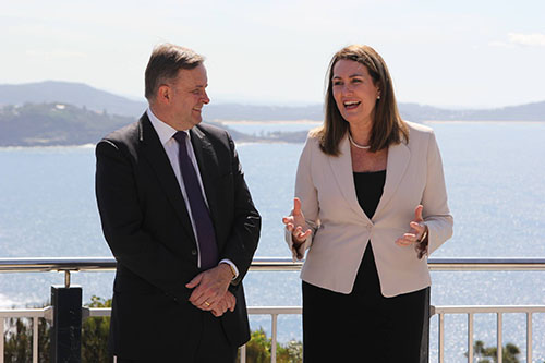 Senator Deborah O'Neill with Labor frontbencher Anthony Albanese.
