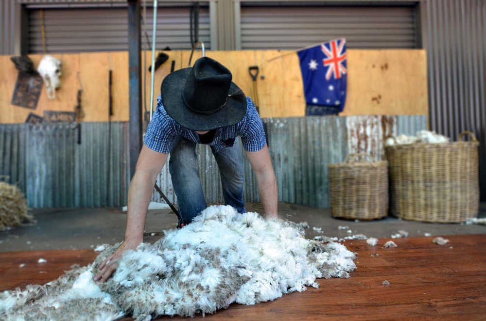 Regional farm work is key to extending your working holiday visa.