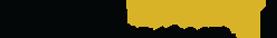 dimuro-ginsberg-logo.png