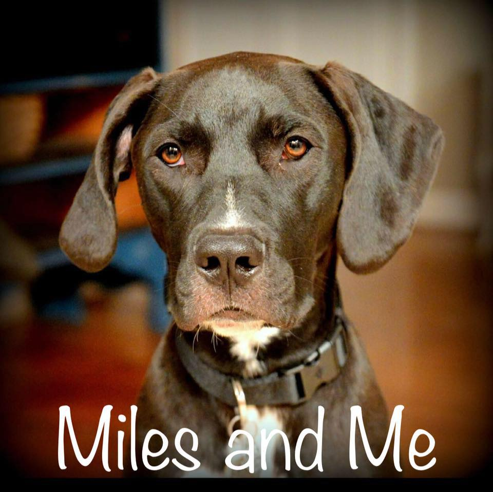 MILES AND ME CUSTOM CREATIONS -