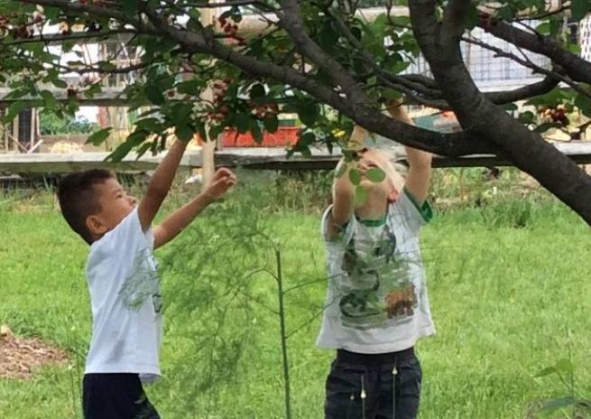 DATER MONTESSORI GARDEN - Dater Montessori Nature Center