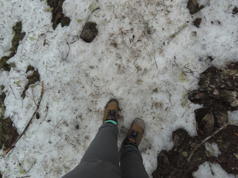Sticks my leggy out real SNOW