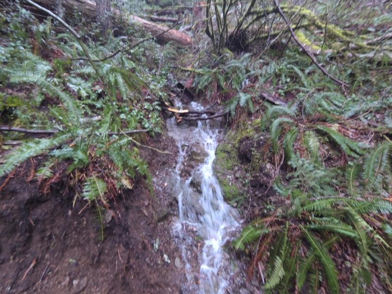A smol waterfall.