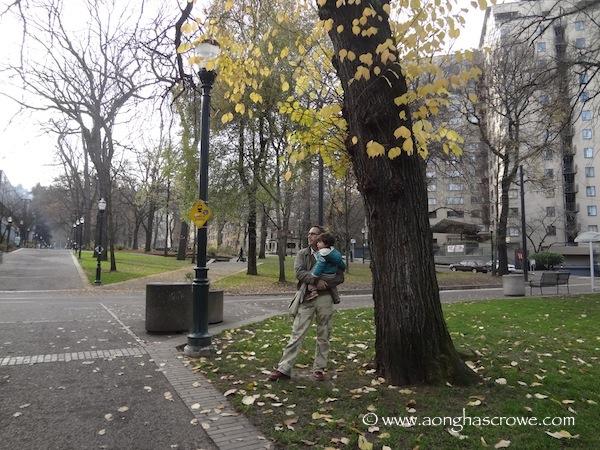 Park Blocks, Portland