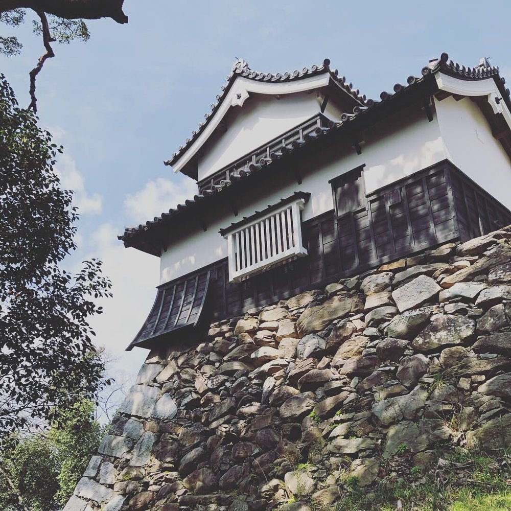 Fukuoka Castles.60D.jpg