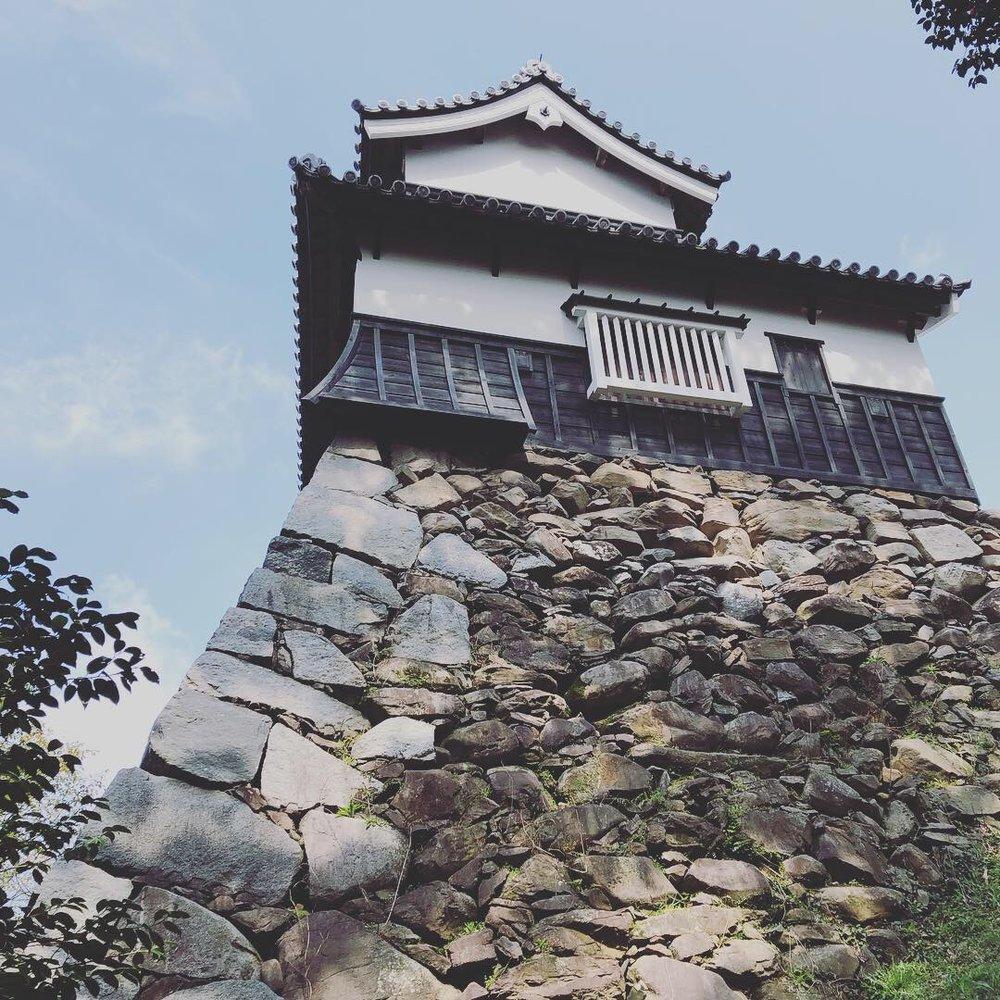 Fukuoka Castles.C30.jpg