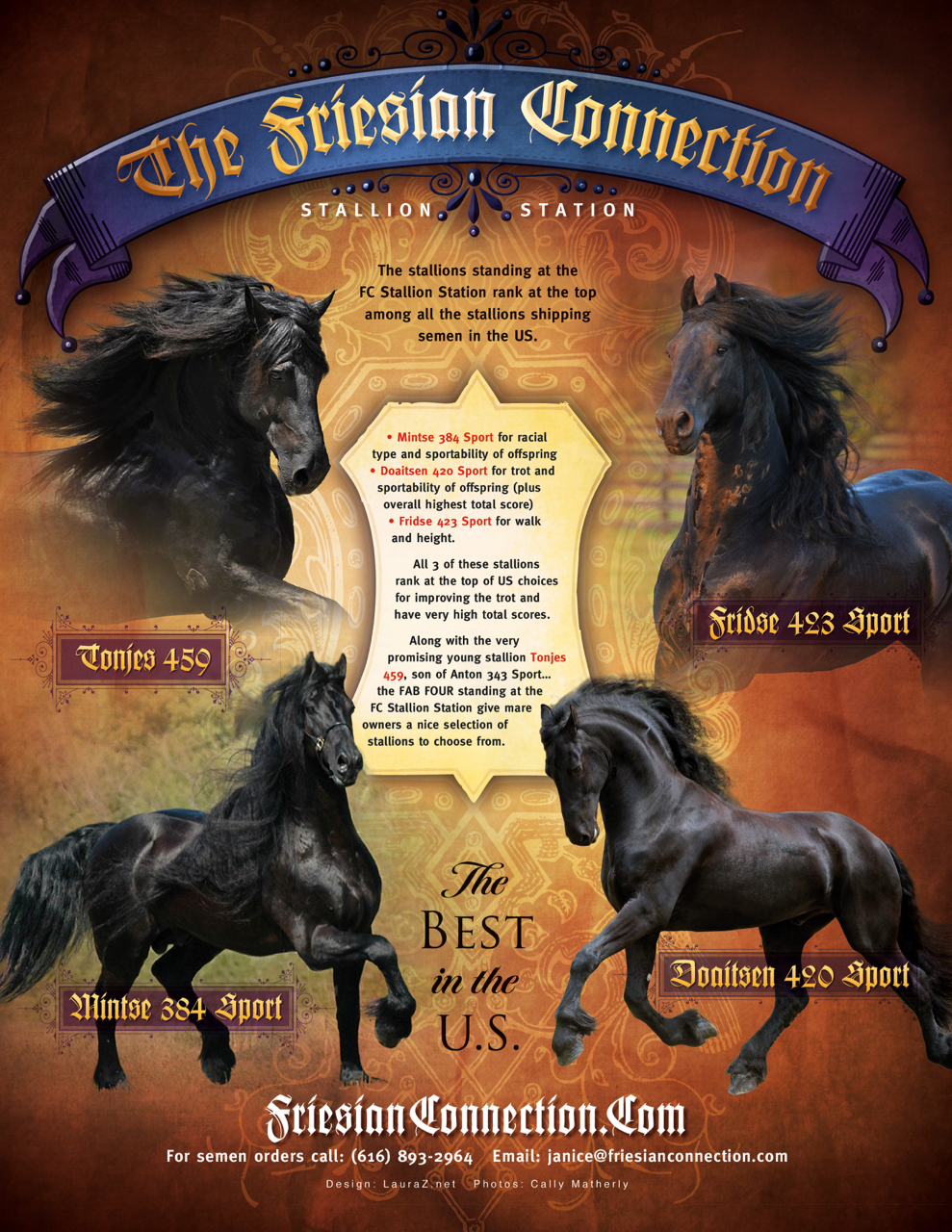 The Friesian Connection ad.jpg