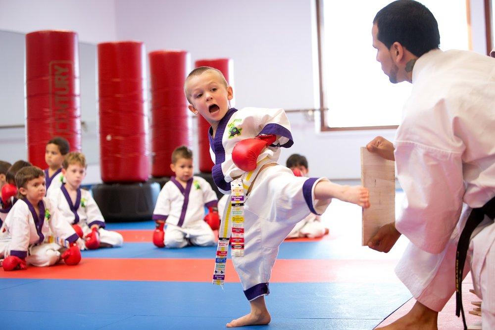 Little Dragons Karate Classes