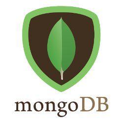 MongoDB.large.jpg