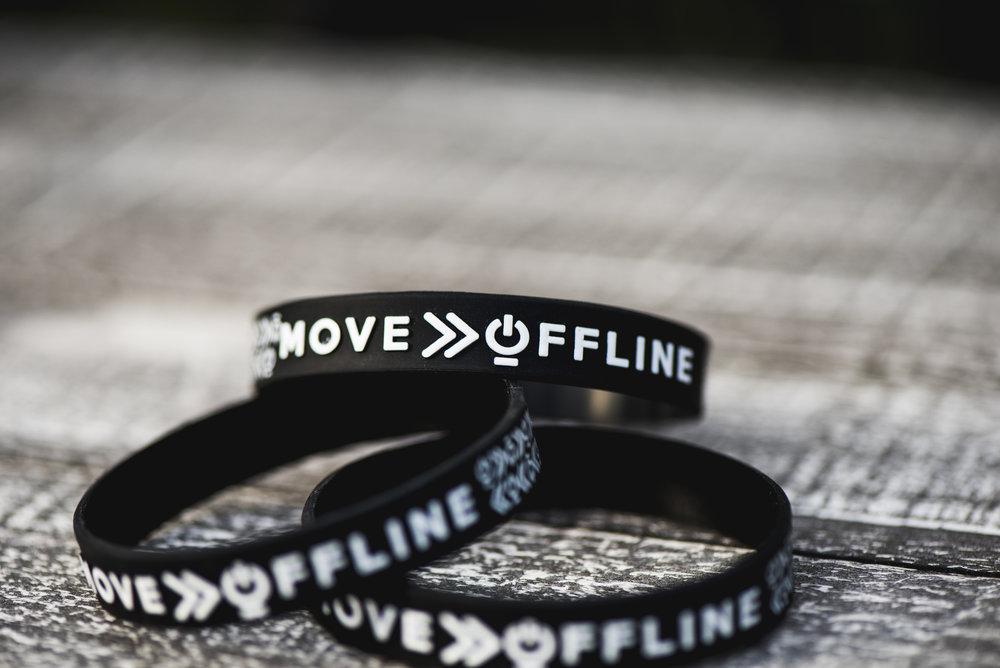Move offline (29).jpg
