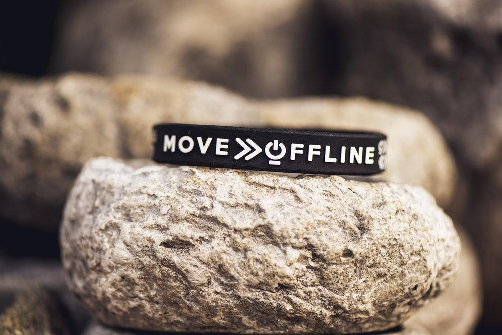 Move offline (39).jpg