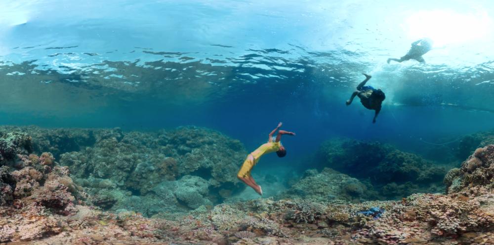 Tubbataha_Monaco_Reef_Underwater_Eart_Seaview360_Christophe_Bailhache