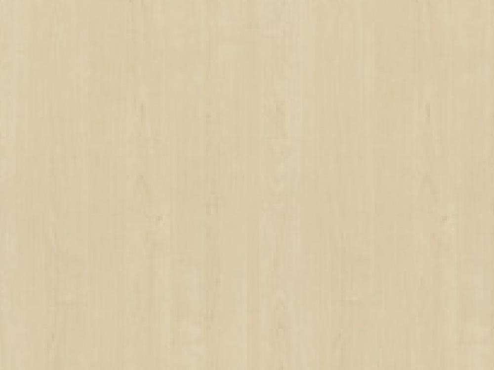 Lund birch