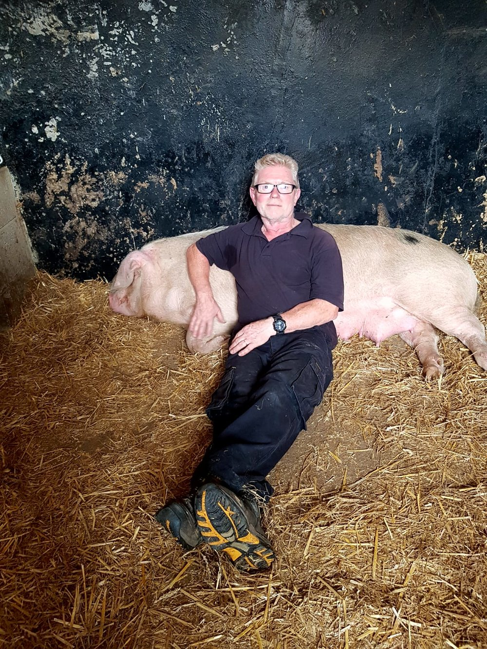 Tim McEntire with Countess the sow.JPG