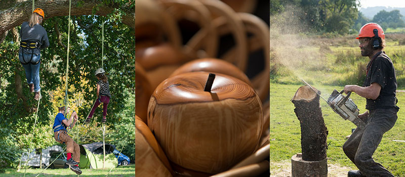 surrey-hills-wood-fair-composite.jpg