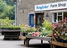 kingfisher-farm-shop-gomshall.jpg