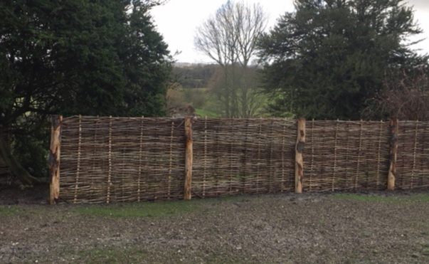 hurdle-making-at-hill-house-farm-dorking.jpg