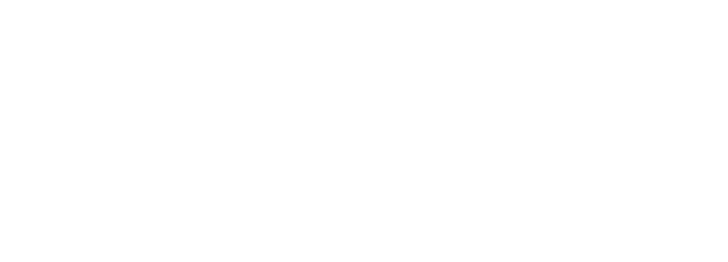 Megawatt Coaching