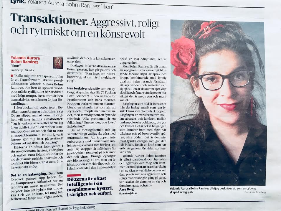 """Aase Berg recenserar """"Ikon"""" i Dagens Nyheter, 2018-03-01"""