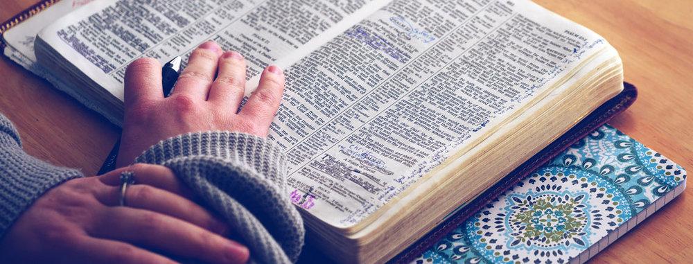 daily-bible-header.jpg