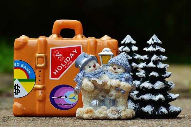 winter-holiday-993244_640.jpg
