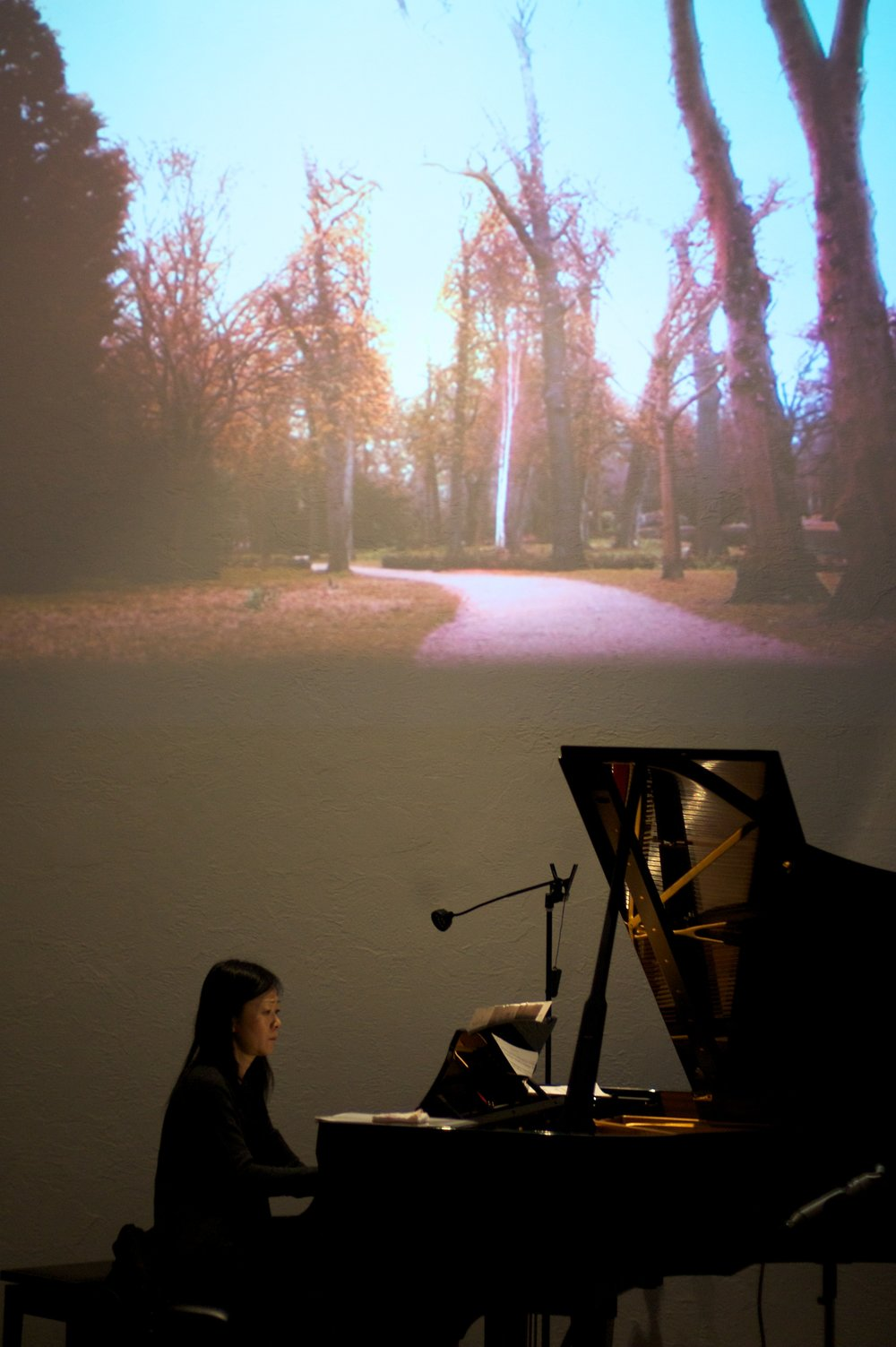 Aquarelles (2012) Music by Yuriko Kojima, for piano. Live-video by Elaine Thomazi Freitas. World premiere.