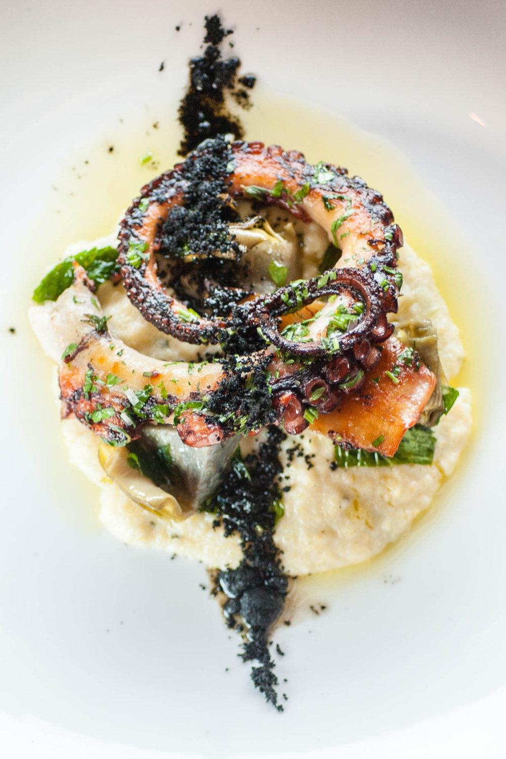 Octopus in Rochester
