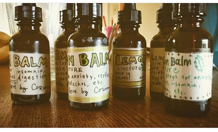 blog — rise up! good witch: tarot and herbal magic