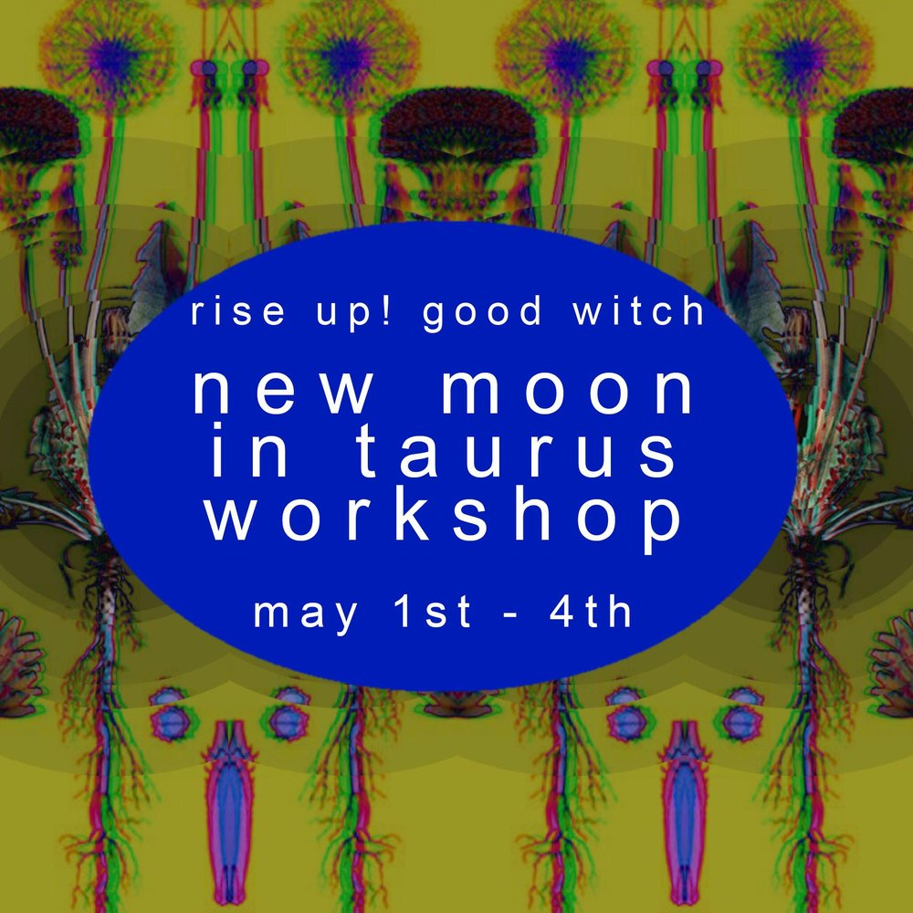 new moon in taurus workshop & updates